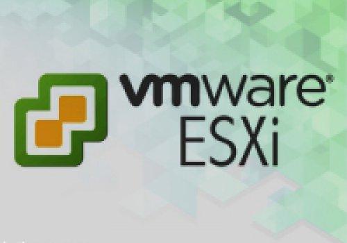لیست مک آدرس ماشین های موجود در ESXi