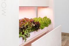 معرفی مزرعه دیواری Click Grown ؛ با تازهترین تکنولوژی کشاورزی در خانه آشنا شوید